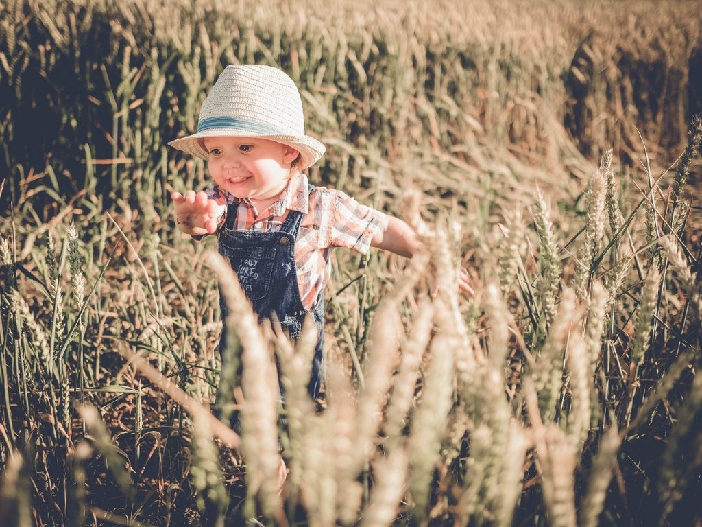 Toddler Boy Field Happy Smile  - IamFOSNA / Pixabay